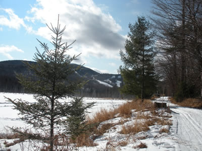 view of big tupper alpine area from cranberry pond