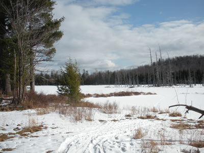 view of cranberry pond