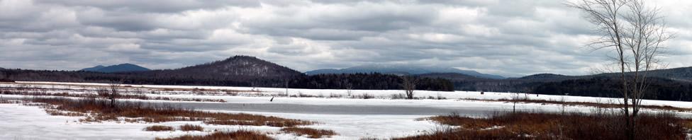 Looking east across Simon Pond