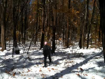 woman on snowshoes in the woods