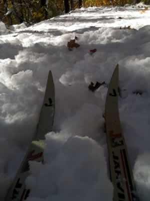 ski tip s in snow