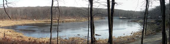 saffin pond panorama