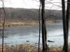 saffin pond panorama