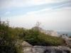 view above treeline