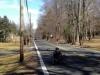 recumbent cyclist riding on meyersville road