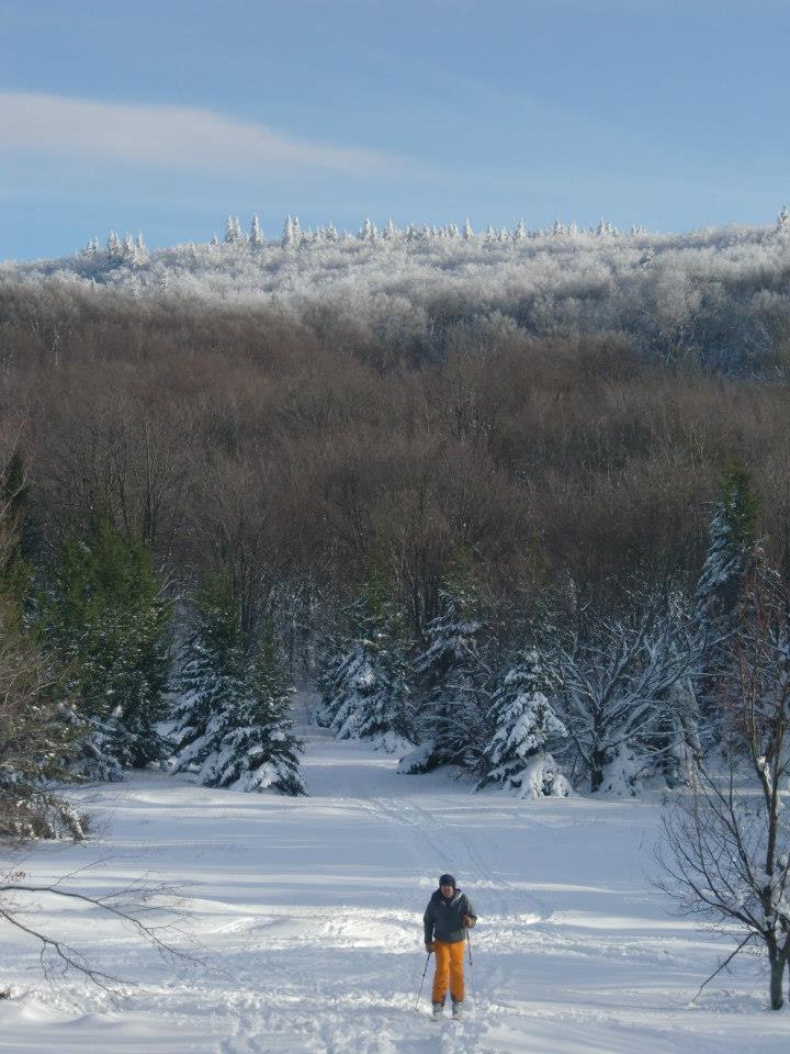 telemark skier descending from bald knob